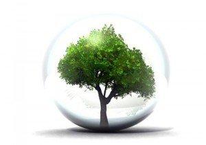 Actions pour la protection de l'environnement environnementjjjjjjjjjjjjjjjjjjjjjjjjjjjjjjjjjjjjjjjjjjjjjjjjj-300x211